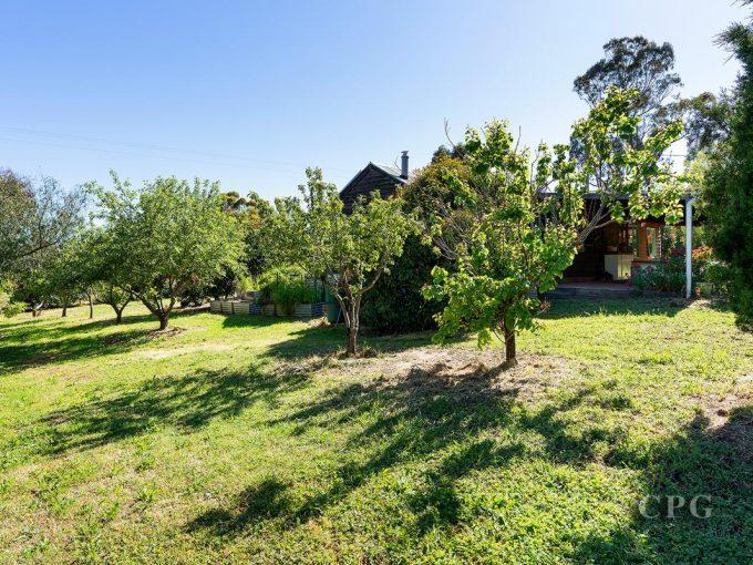 Residence and Studio on Spacious Grounds